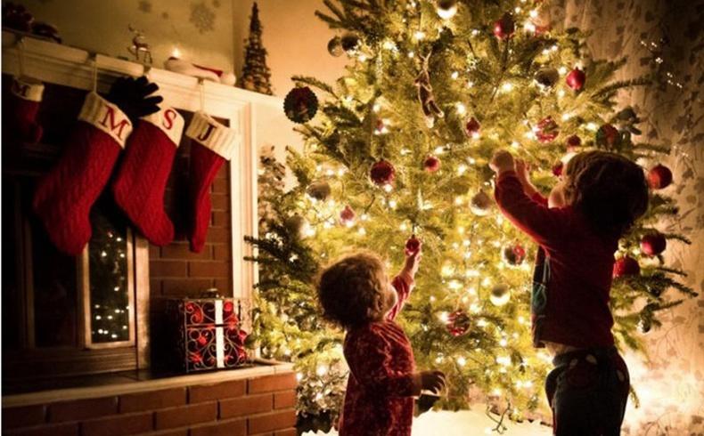 Гацуур модоо чимэглэх гайхалтай санаанууд