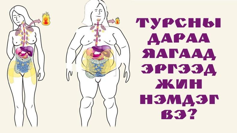 Турсны дараа яагаад биеийн жин ахин нэмэгддэг вэ?