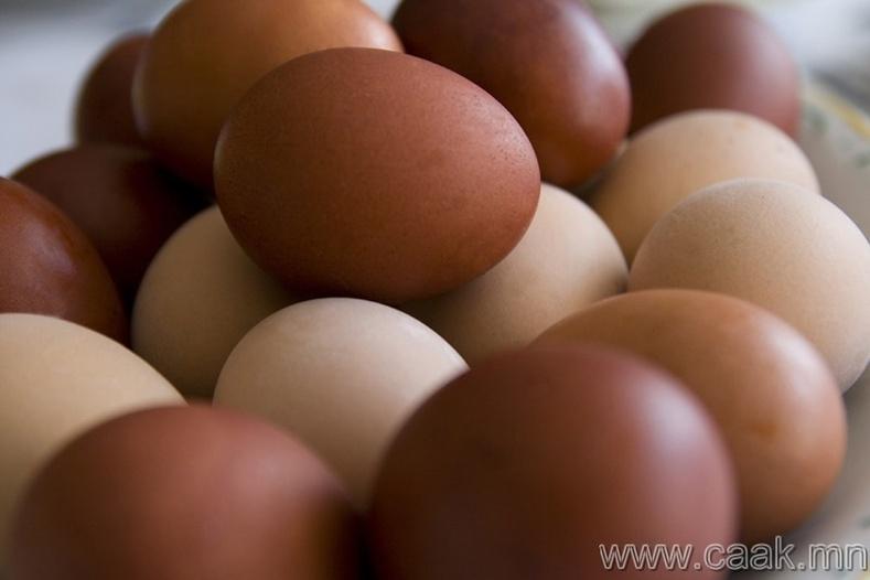 Бор өнгийн өндөг нь цагаанаасаа илүү эрүүл мэндэд тустай