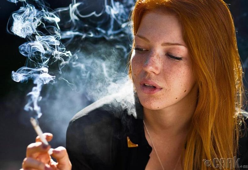 Тамхиа хая