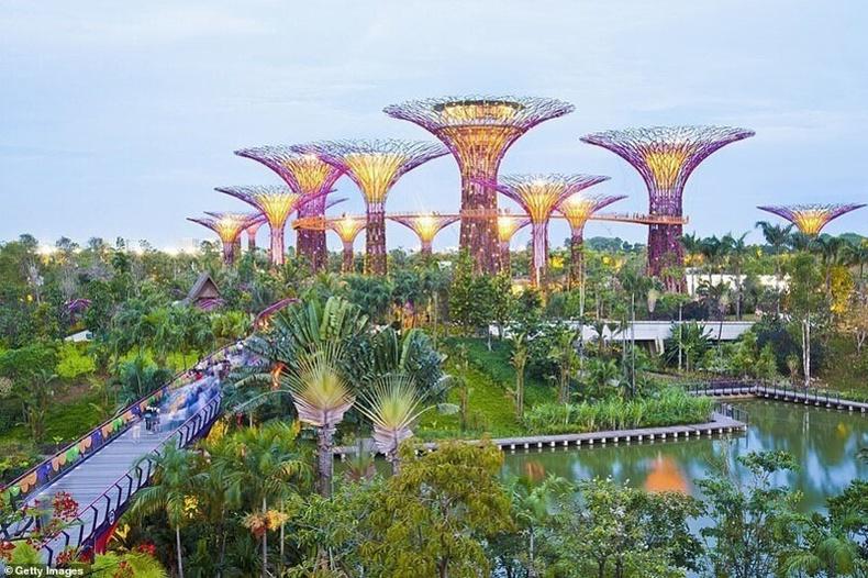 Тохойн дэргэдэх цэцэрлэг, Сингапур