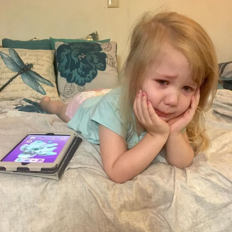 iPad-ны дэлгэцийн зургаа өөр цэцгээр сольсон ээждээ гомджээ.