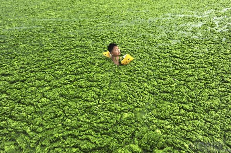 БНХАУ дахь Чин Дао гол