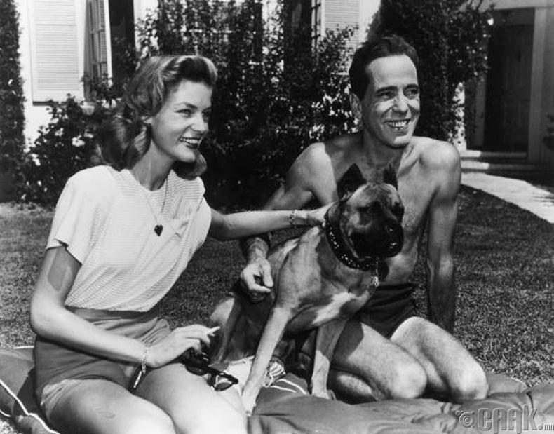 """""""Касабланка"""" киноны жүжигчин Хамфри Богарт (Humphrey Bogart) эхнэр Лорен Бэйкаллын хамт"""