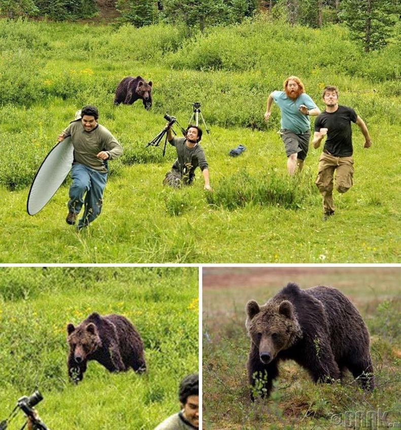 """""""National Geographic"""" сэтгүүлийн редакц 4 сарын 1-ний шоглоом болгож баавгайгаас зугтаж буйгаар зургаа даруулжээ"""