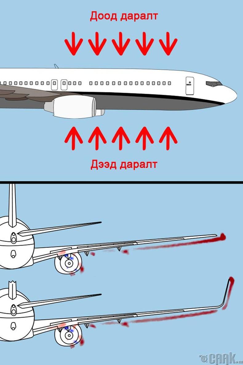 Онгоцны далавч яагаад ээтэн байдаг вэ?