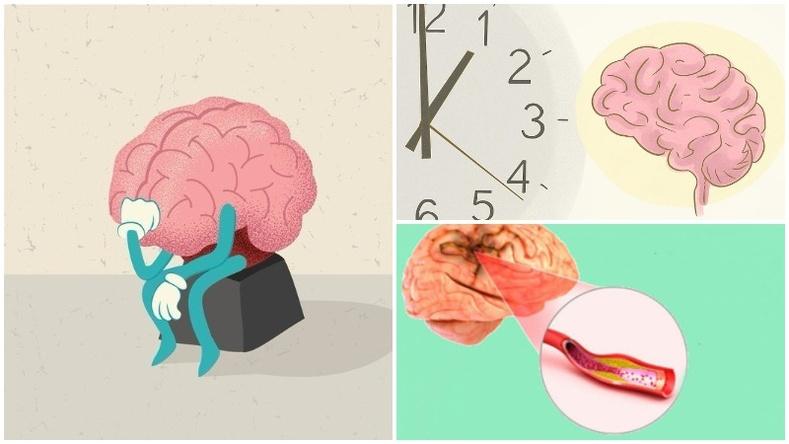 Таны муу зуршлууд тархины үйл ажиллагаанд хэрхэн нөлөөлдөг вэ?