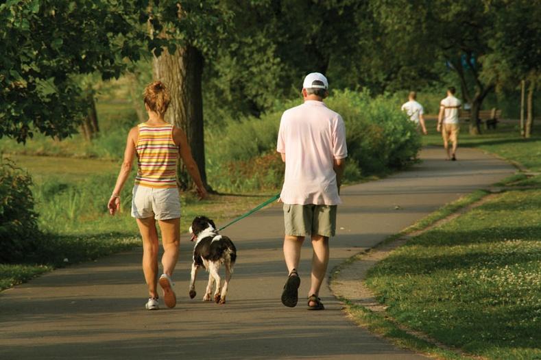 Явган алхах хэвшилтэй