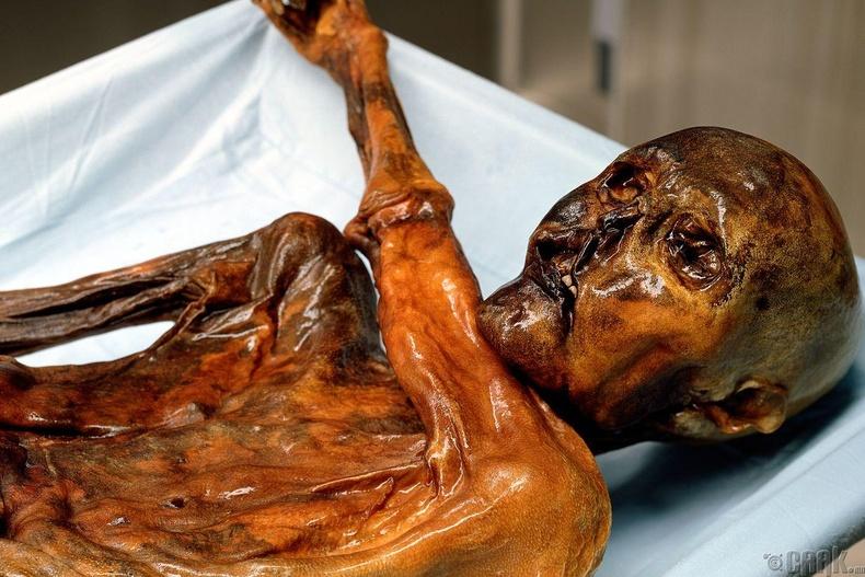Отци мумми (Mummy Ötzi)