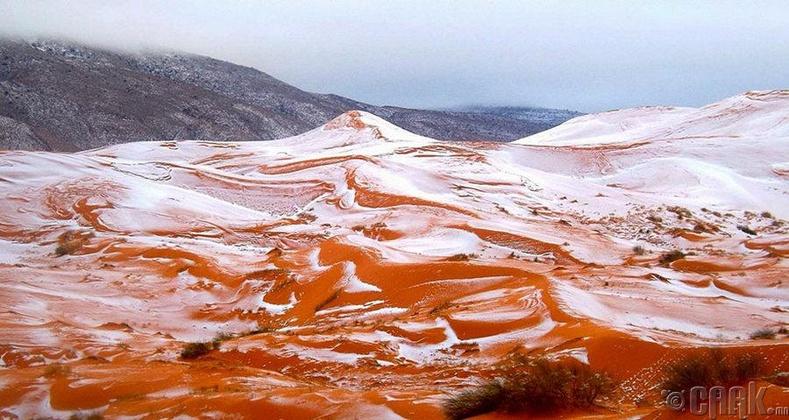 37 жилийн дараа Сахарын цөлд цас орсон нь
