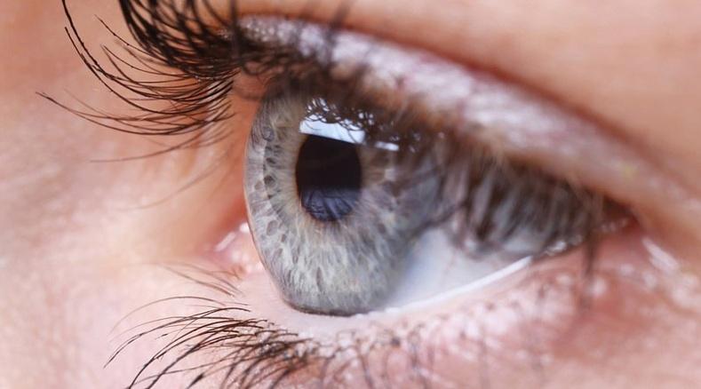 Нүдний салст бүрхэвчийг хамгаална