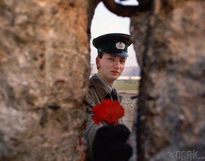 Берлиний хананы хамгаалагч-1989 онд Берлиний ханыг нураах үед хананд гарсан нүхээр хамгаалагч залуу цэцэг дамжуулж байгаа нь