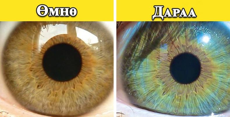 Таны нүдний өнгө өөрчлөгддөгийг та мэдэх үү?