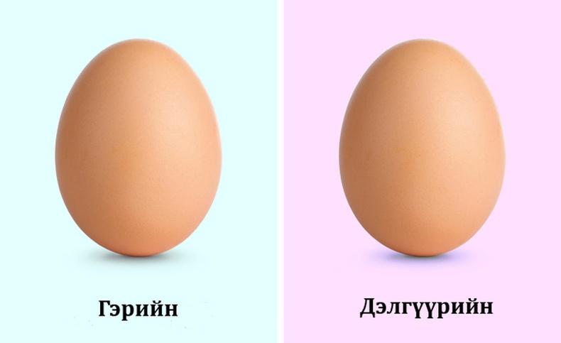 Гэрийн тахианы өндөг  илүү чанартай
