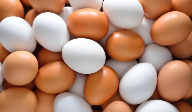 Бор болон цагаан өндөгний алийг нь авах хэрэгтэй вэ?