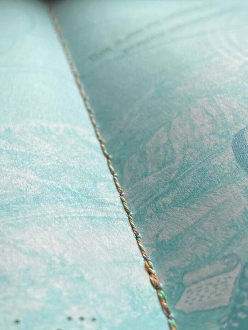 Ирландын паспортыг төрийн далбааны өнгийн утсаар оёжээ.