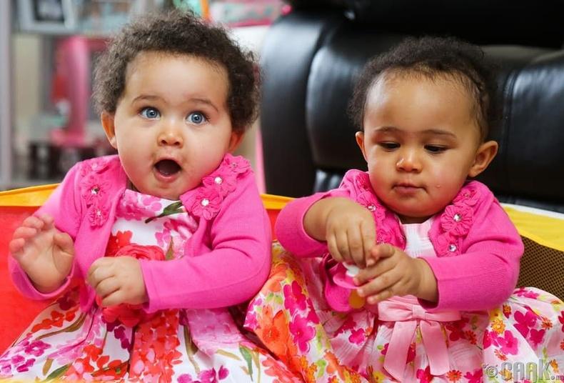 Амели (Amelia) болон Жасмин Эпплби (Jasmine Appleby)