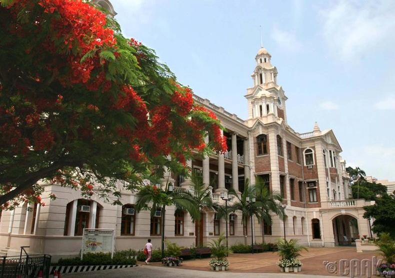 Хонконгийн их сургууль (The University of Hong Kong)