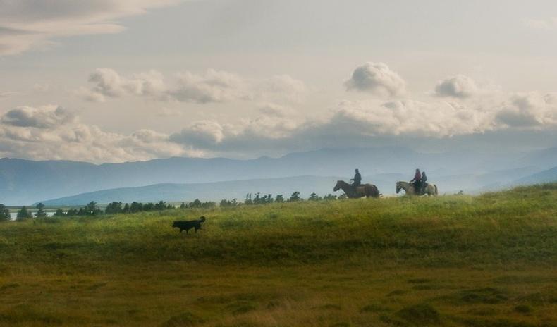 Мэлмий баясам Монголын амар амгалан (20 фото)