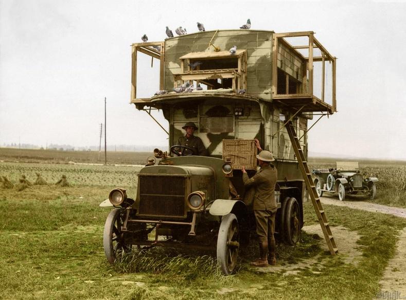 Мэдээ хүргэгч тагтааны үүр бүхий ачааны машин
