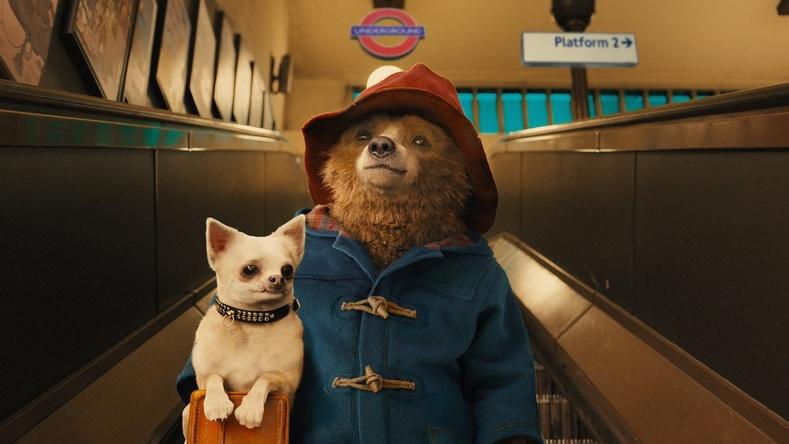"""Paddington Adventures 2"" (2017) - 100%"
