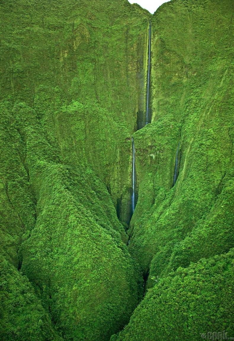 Хонокохау хүрхрээ, Мауи