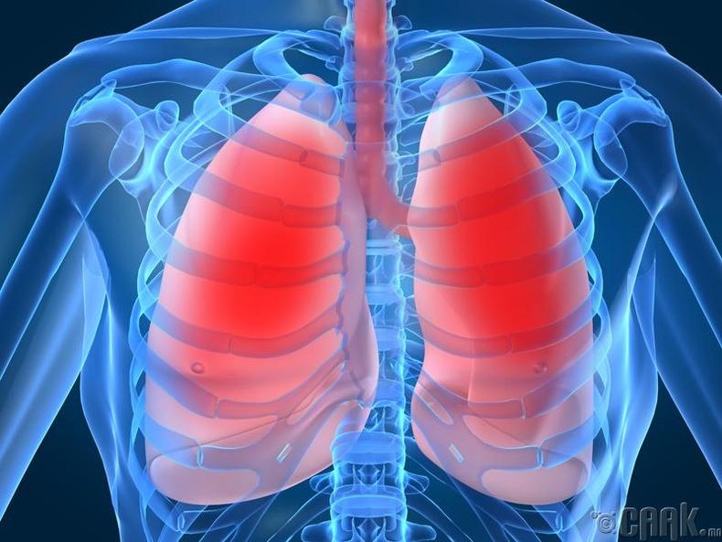 Уушгины үйл ажиллагаа доголдох