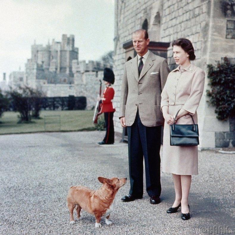 Хатан хаан нөхөр болон корги нохойныхоо хамтаар, 1959 он