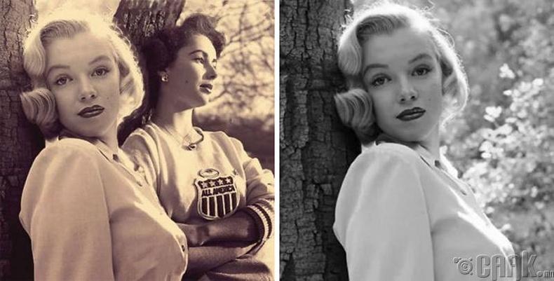 Жүжигчин Мерилин Монро (Marilyn Monroe) Элизабет Тэйлор (Elizabeth Taylor) нар хэзээ ч хамт зураг авахуулж байгаагүй