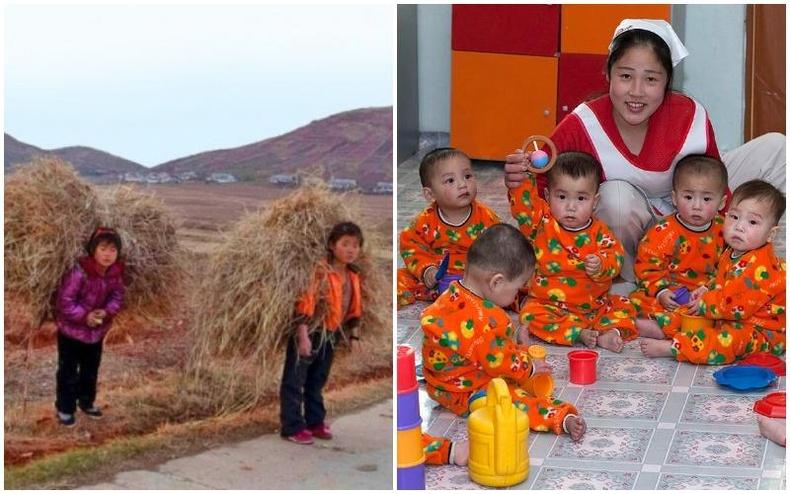 Хойд Солонгост төрсөн хүүхдүүд бусдаас юугаараа ялгаатай вэ?