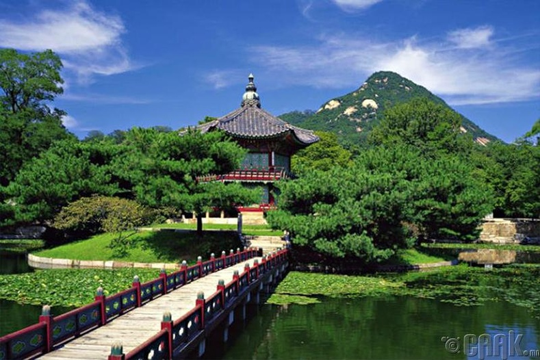 Чежү арал (Өмнөд Солонгос улс)