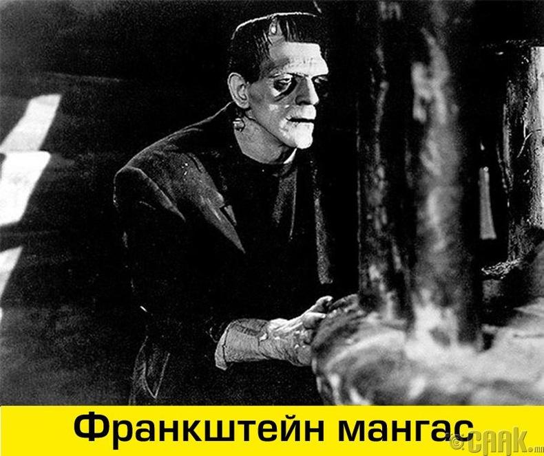 Франкштейн бол мангас биш эрдэмтний нэр