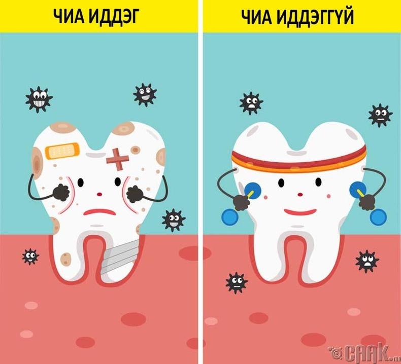 Шүдийг эрүүл байлгана