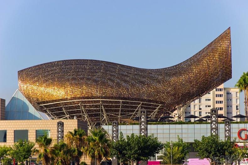 Загасан хэлбэр бүхий олимпийн хороо, Барселон