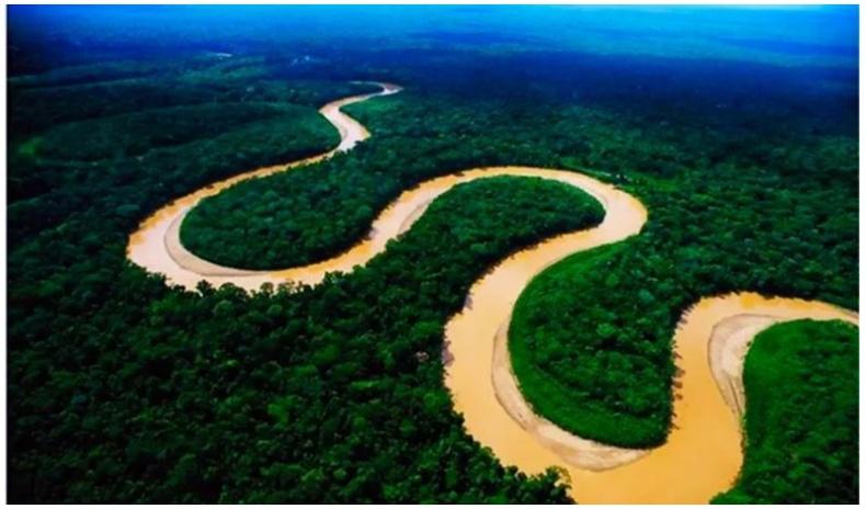 Амазон мөрөн дээгүүр яагаад ганц ч гүүр тавиагүй вэ?