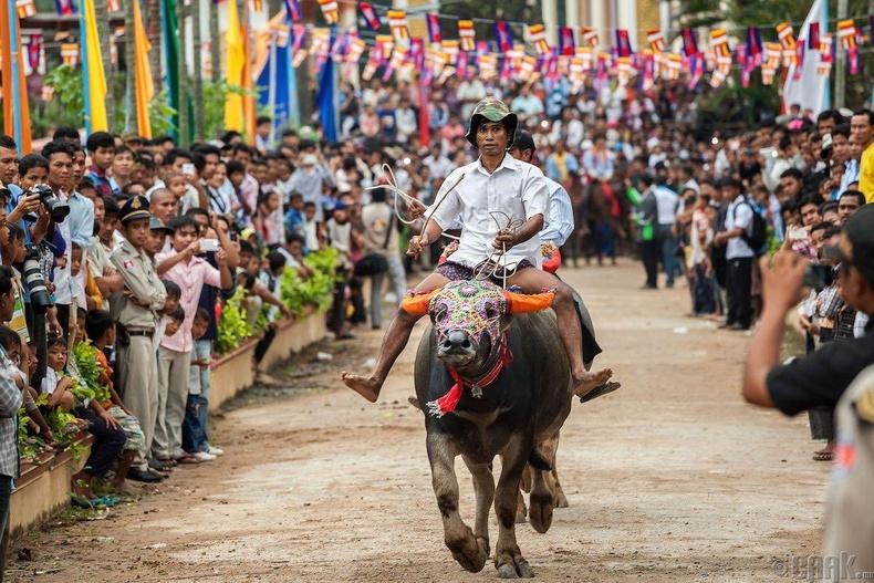 Камбож
