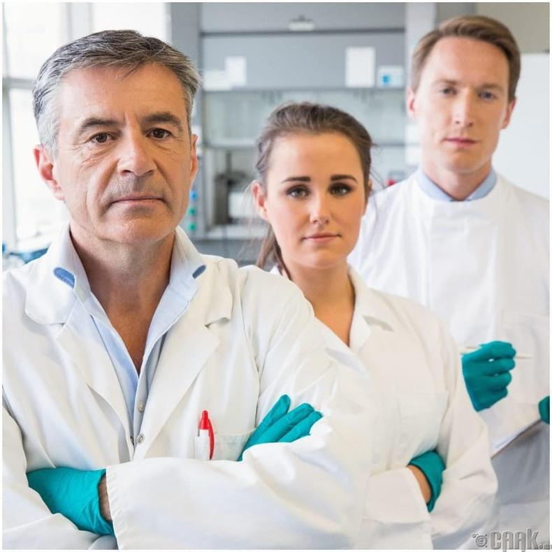 Эрдэмтэд, судалгааны баг