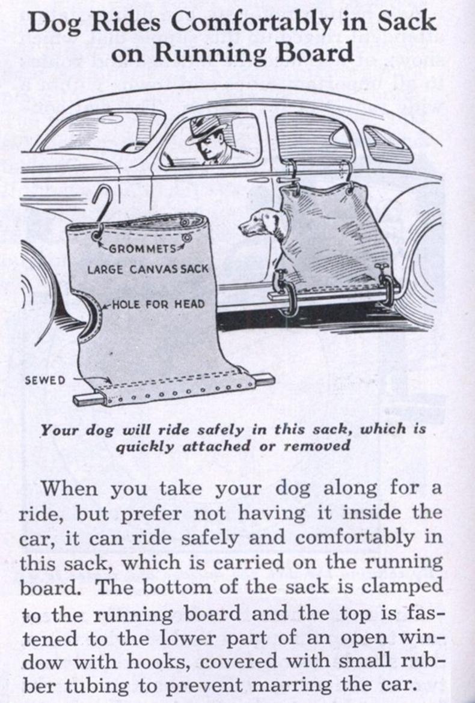 Машины гадна нохойгоо авч явах цүнх