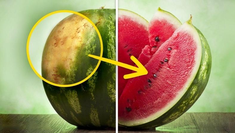 Шинэ жимс, ногоог хэрхэн таних вэ?