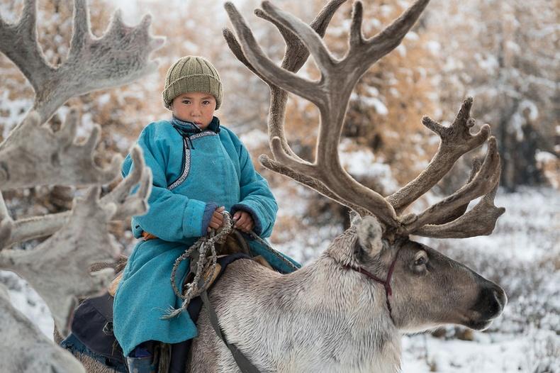 Монголын цаатнууд Америк гэрэл зурагчны дуранд