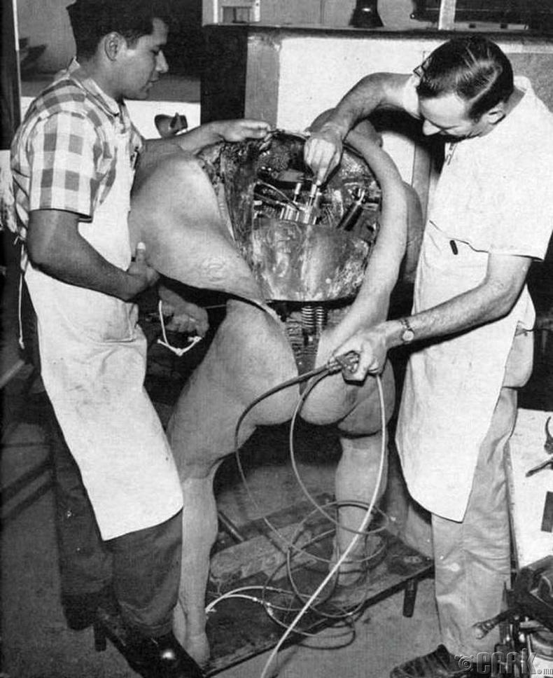 """""""Дисней"""" компанийн инженерүүд анхны хөдөлгөөнт хүүхэлдэйг бүтээж байгаа нь - 1964 он"""