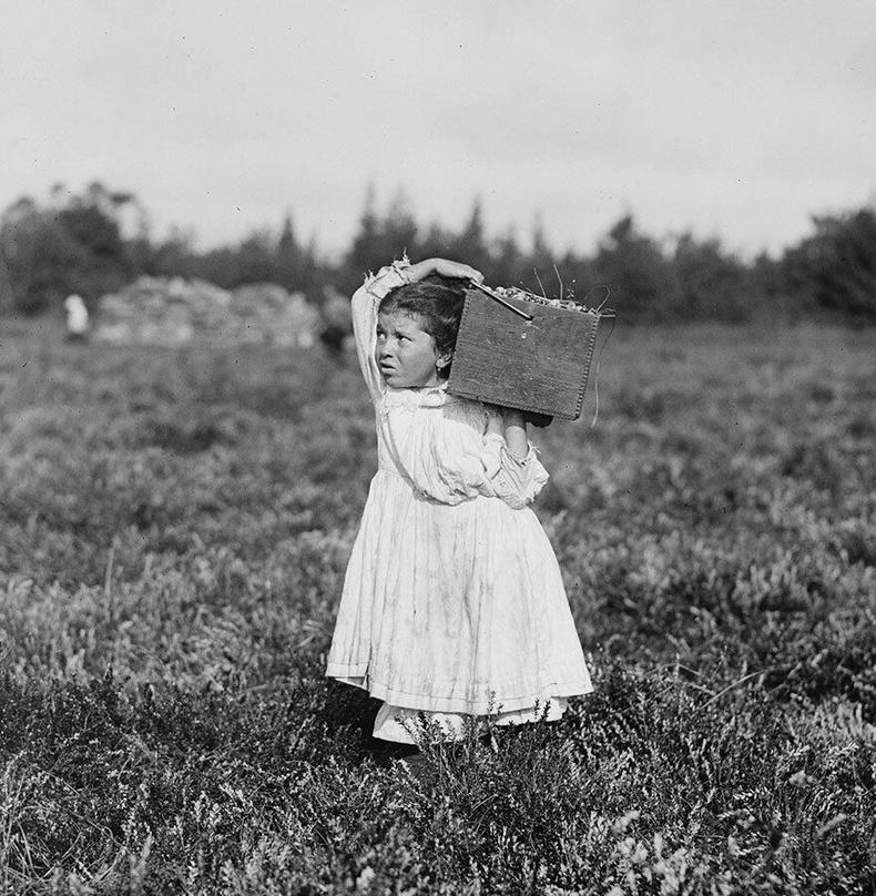 8 настай Женни Камилло, Нью-Жерси муж - Цангис жимс хураагч