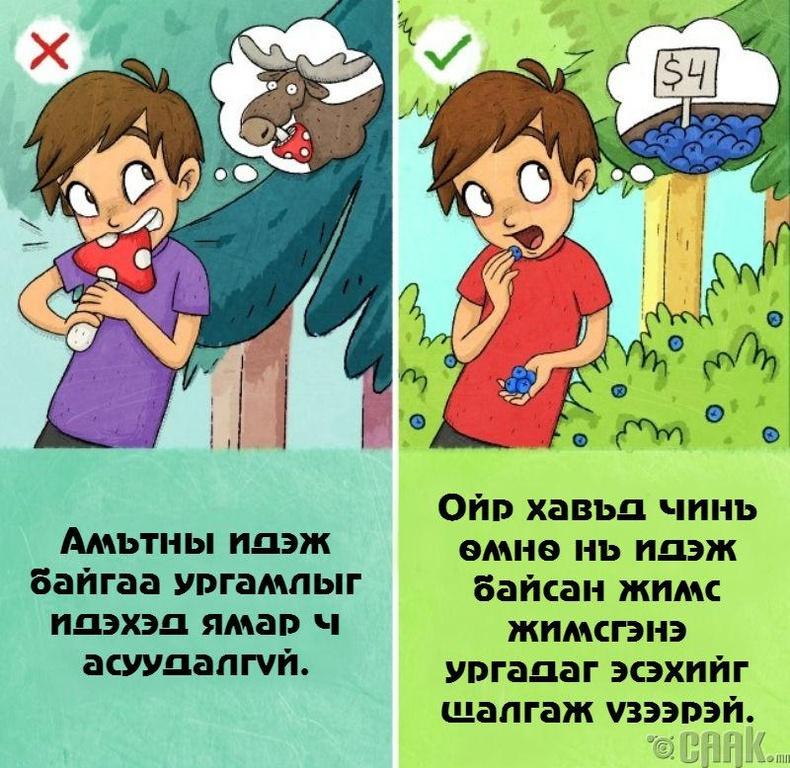 Хортой, хоргүй ургамлыг ялгах