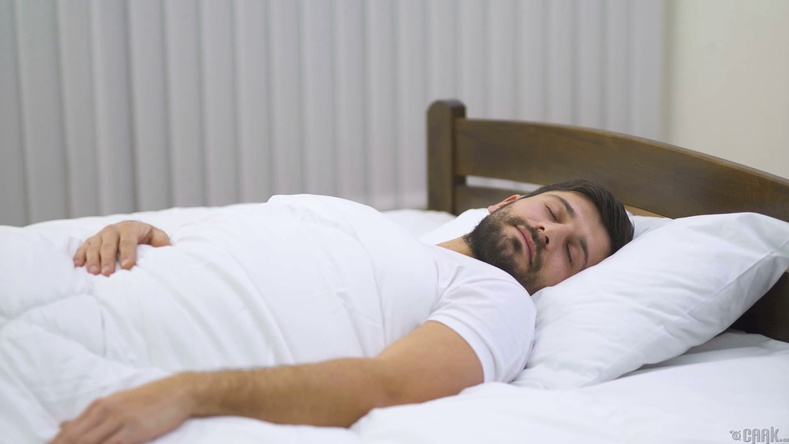 Бид яагаад унтдаг вэ?