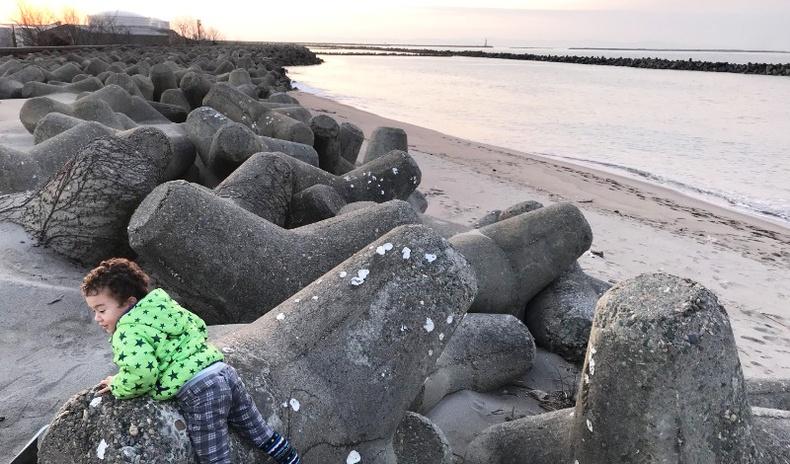 Далайн эрэг дээрх эдгээр учир битүүлэг зүйлс юу вэ?