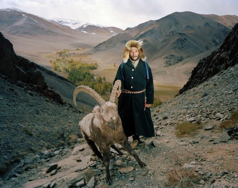 Аманкельд ба түүний агнасан янгир. Монгол, 2013