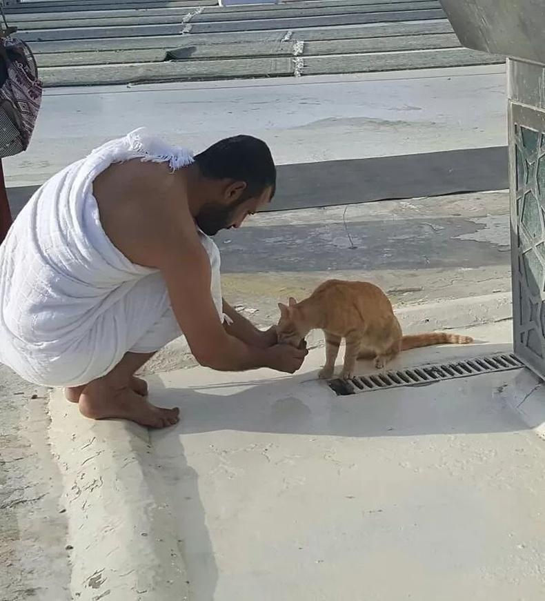 """""""Халуунд цангаж байгаа мууранд ус хийж өгөх савгүй байсан эр алгандаа ус тосож өгч байгаа нь."""""""