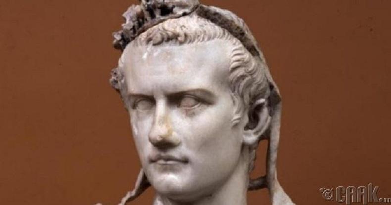 Калигула өөрийн морио сенатын гишүүнээр томилжээ