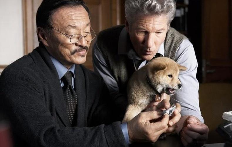 """Hachi: A Dog's Tale"""