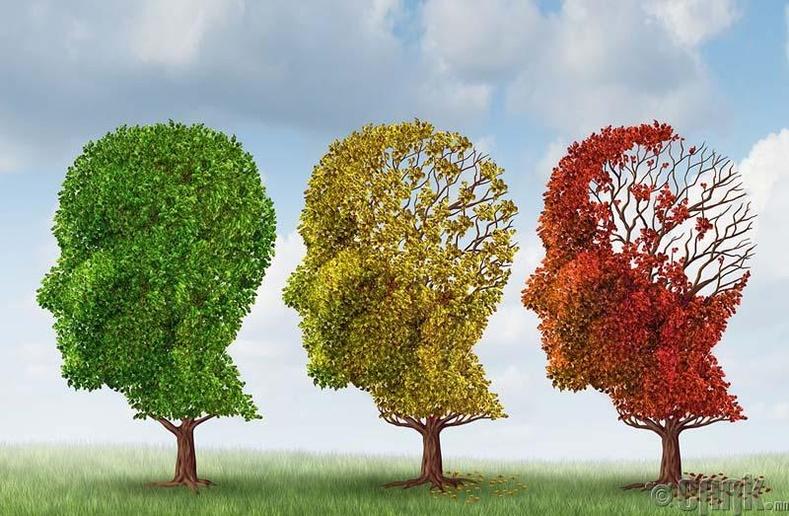 Альцгеймер өвчинөөс сэргийлнэ